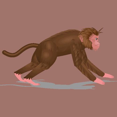 Monkey Speed